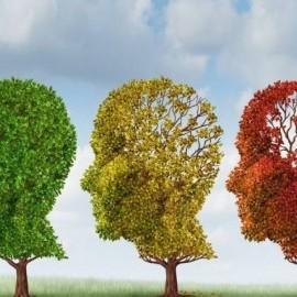 Uleiul de peste ne ajuta sa avem o memorie mai buna?